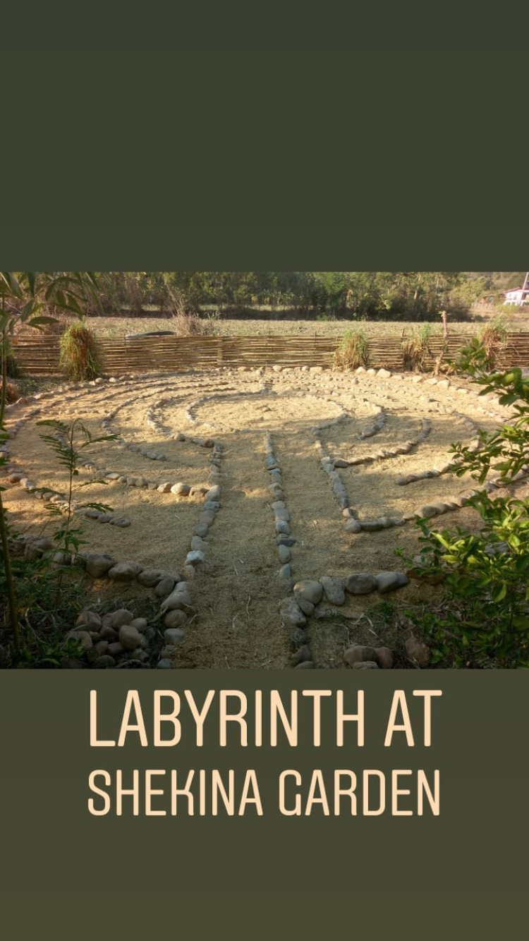 Here's a shot of the labyrinth Joshua made at Shekina Garden.