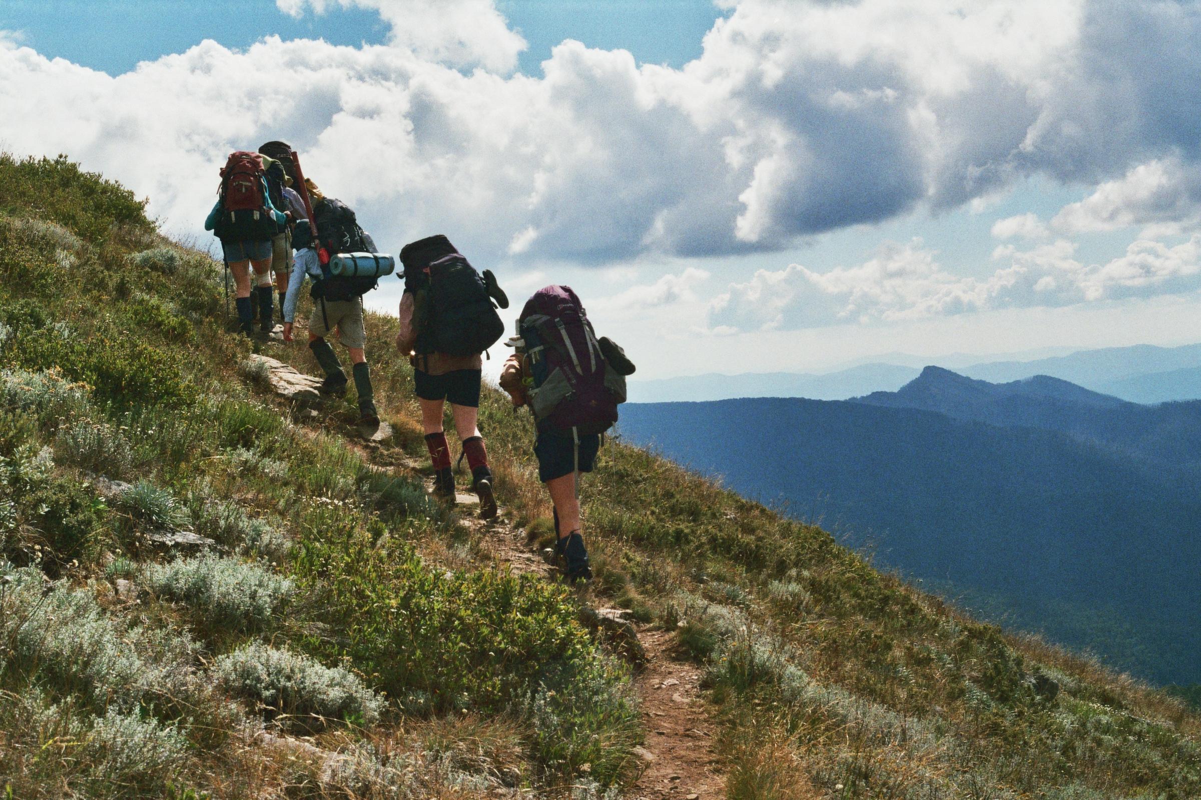 Alpine Walk 2017.3.jpg