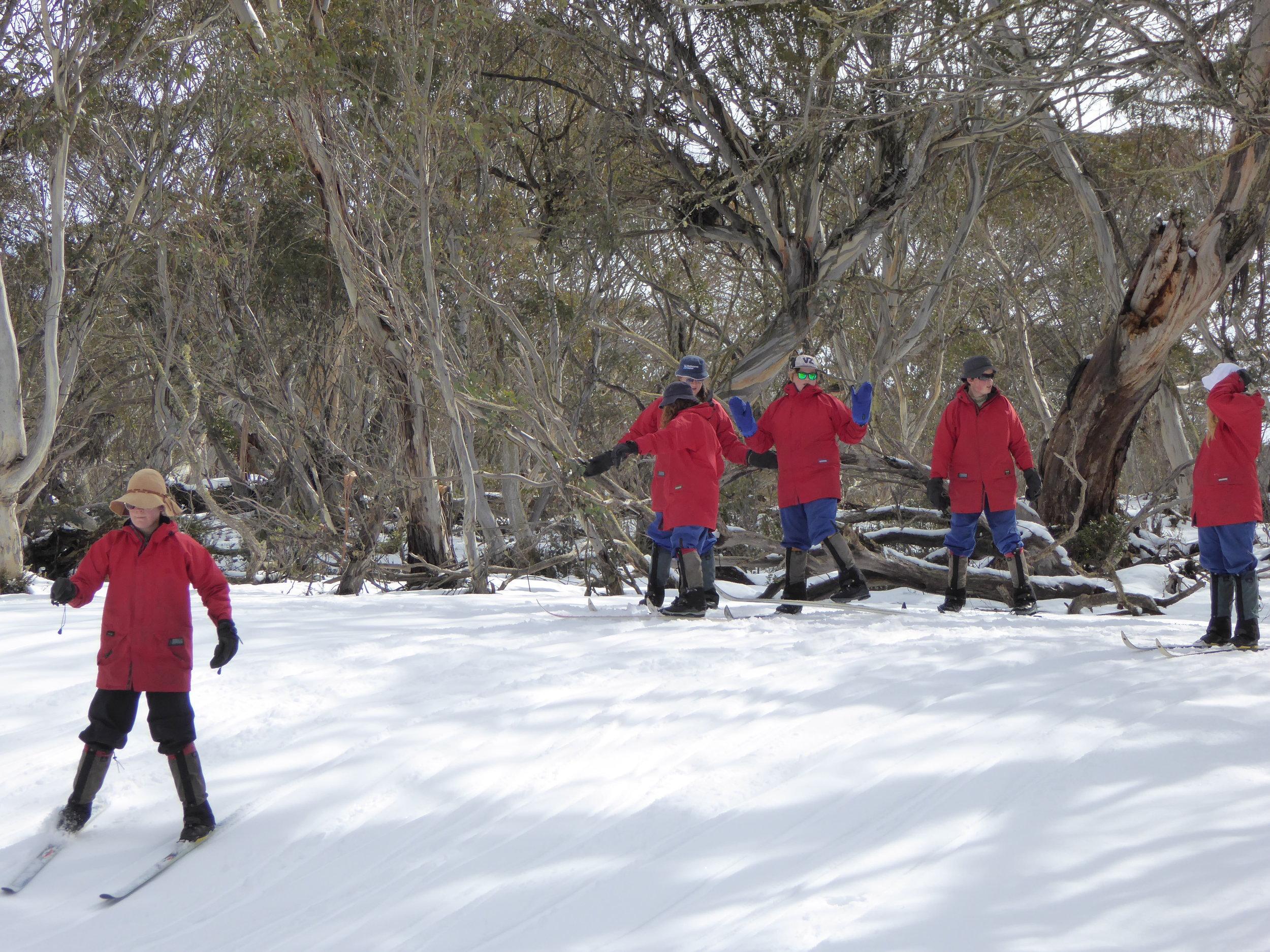 Winter Programs at Mittagundi