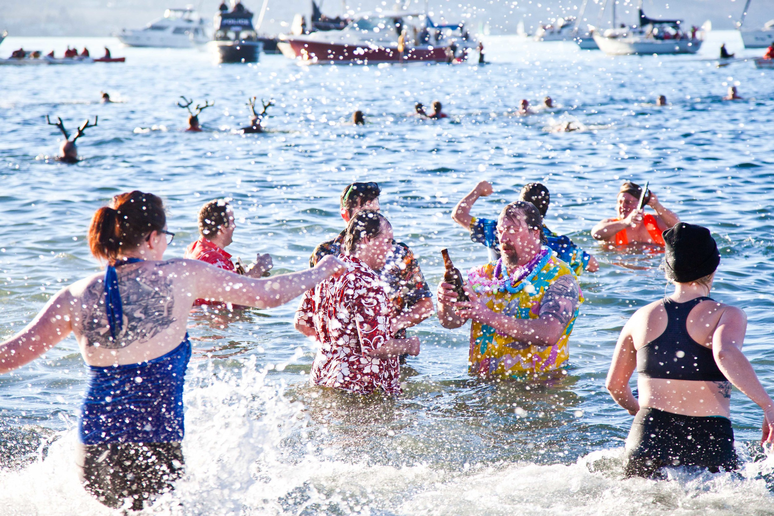 Polar Bear Swim-5649.jpg