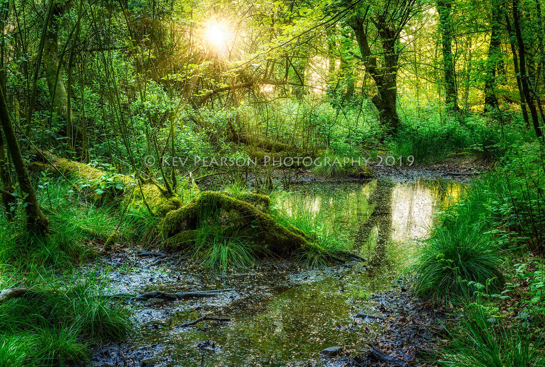 Little Paradise -