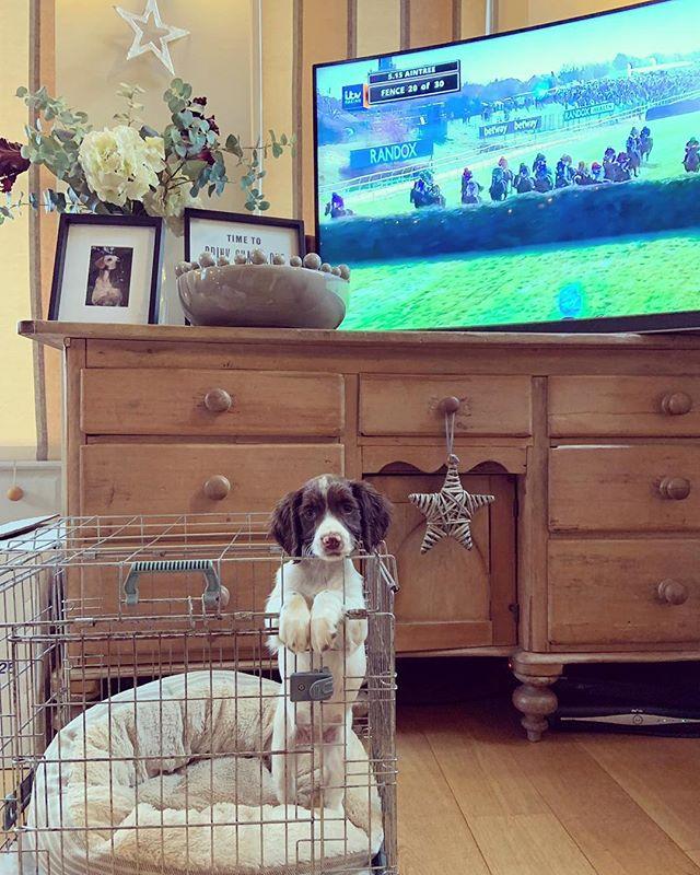 Pippa enjoying the Grand National! 🐎#wedidntwin @leannemharrold
