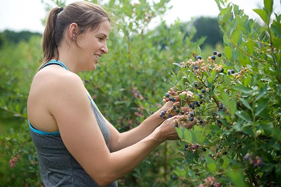 blueberries_14_8