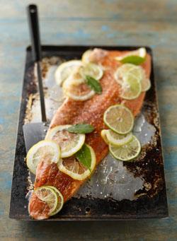 Raw Salmon.jpg