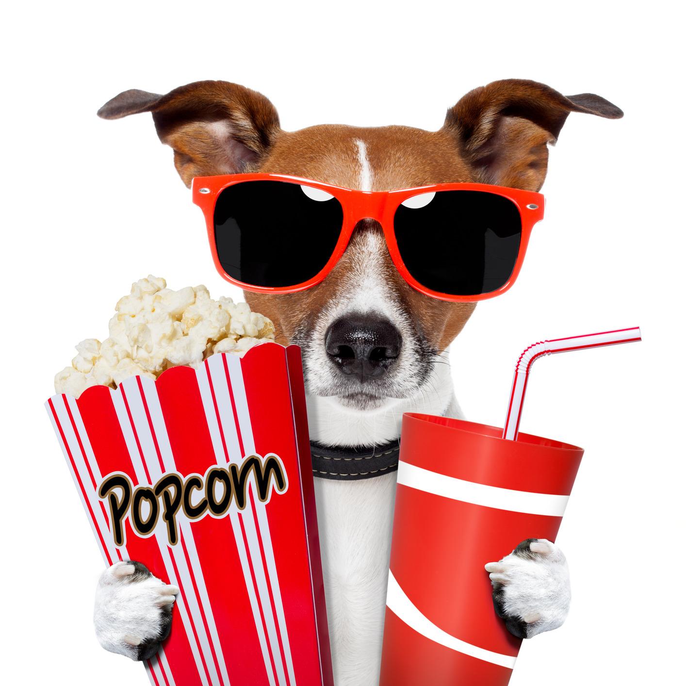 Washington_Humane_Society_Movie_Fundraiser.jpg