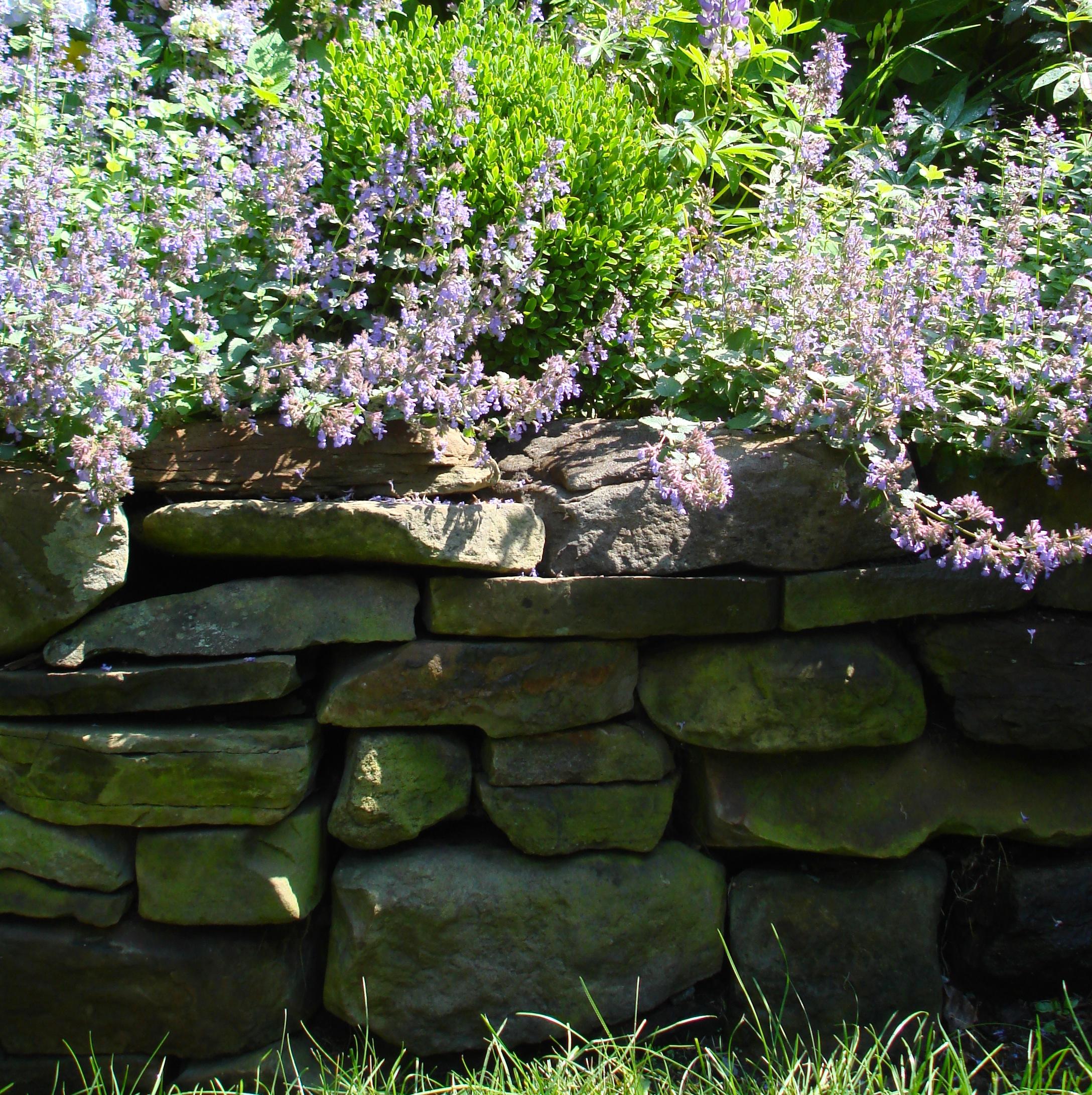 Stonewall With Flower Garden