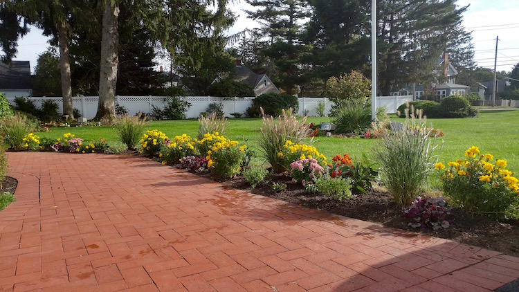 A sunny perennial border with vibrant flowers & ornamental grasses. Space was reserved for low growing annuals such as scavola and alyssum.