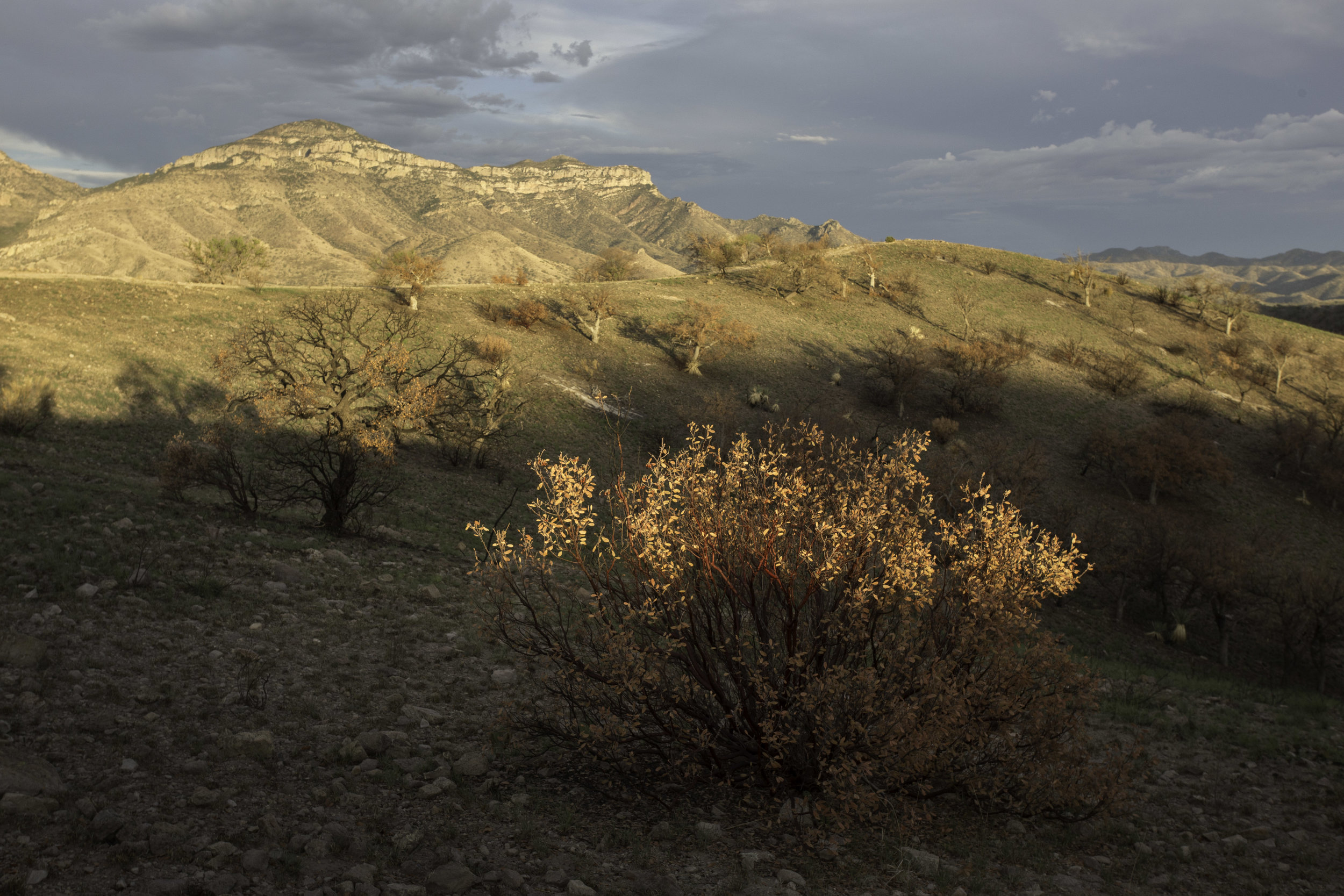 california_gulch_9566b.jpg