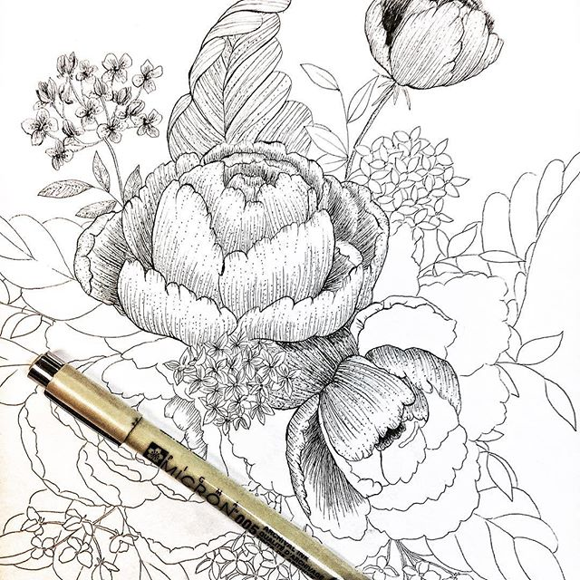 sketchbook florals.jpg