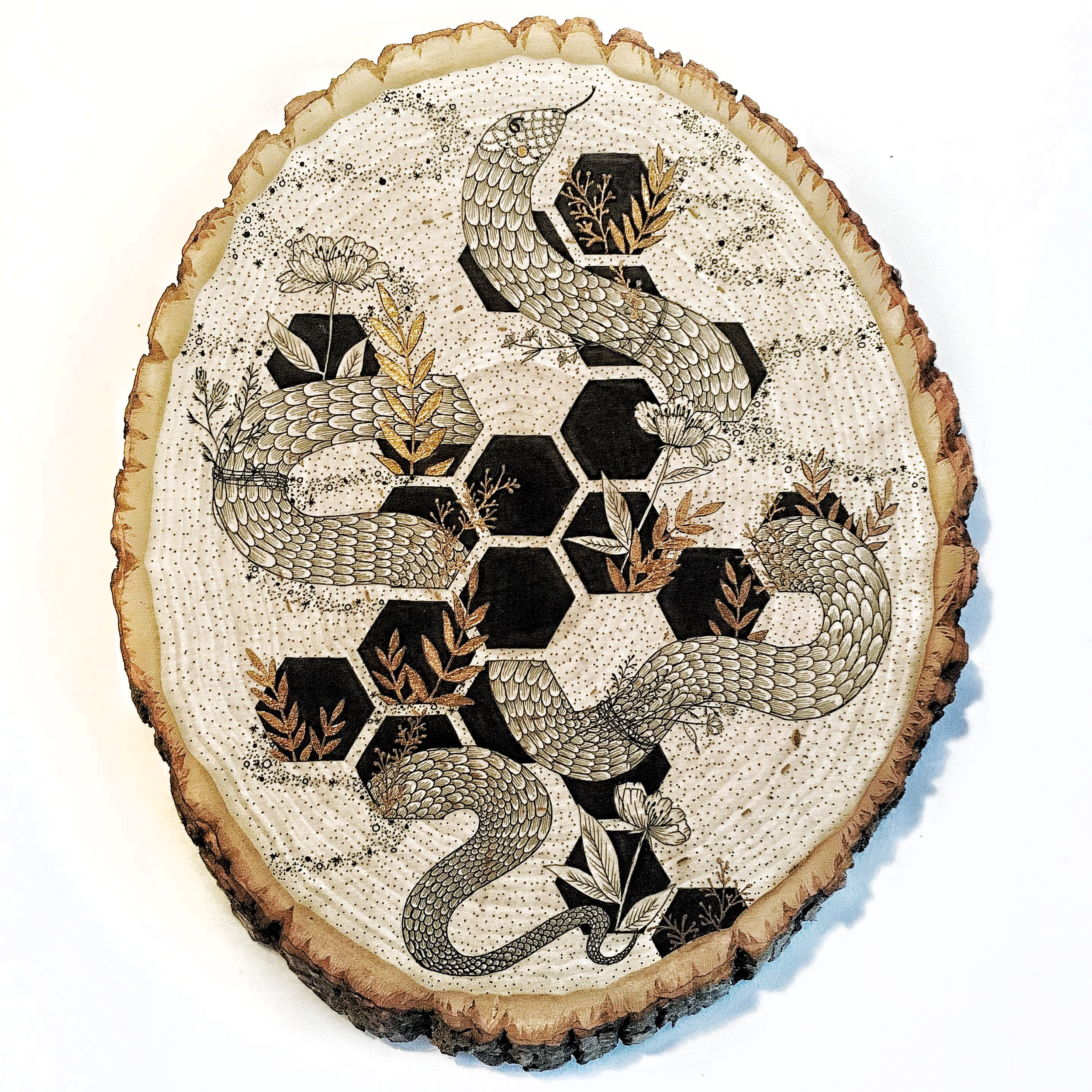 snake.honeycomb