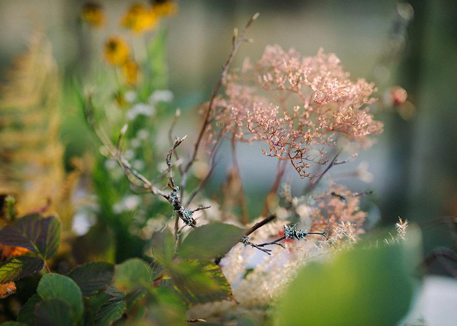 An Autumn Retreat - Susanna Nordvall (40)1.jpg