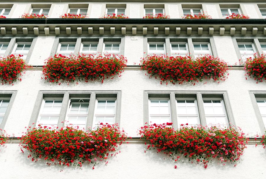 Munich, Munchen, Germany Travel Photography (9).jpg