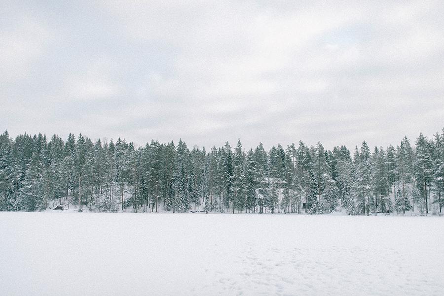 A winter gathering in Nuuksio, Hawkhill Nature, Hey Look, Tuulia Talvio (12).jpg