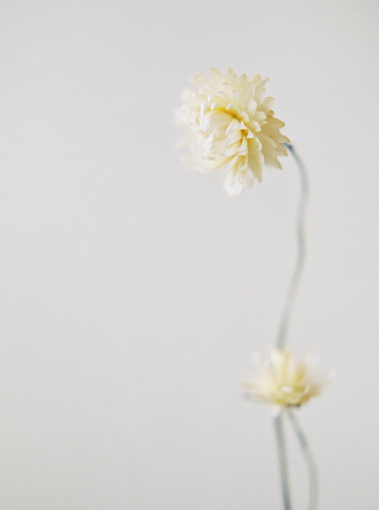 Bridal Inspiration, Wedding Bouquet, Hääkuvaus, Film Wedding Photographer, Table Setting Inspiration, Stationery, Dried Flowers, www.nordandmae.com, www.susannanordvall (30).jpg