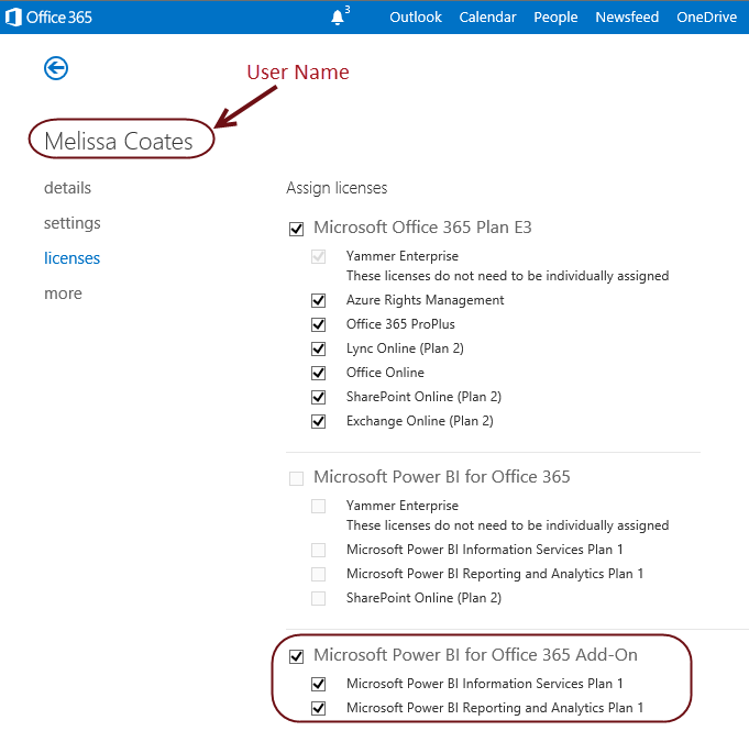 The Licenses page of a user account in the Office 365 Admin Center