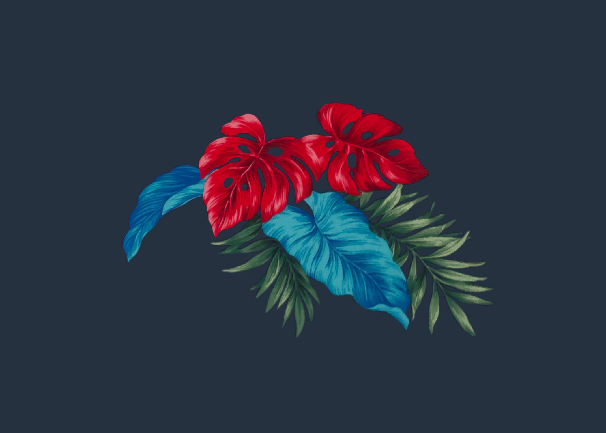 siboney flower 1.jpg