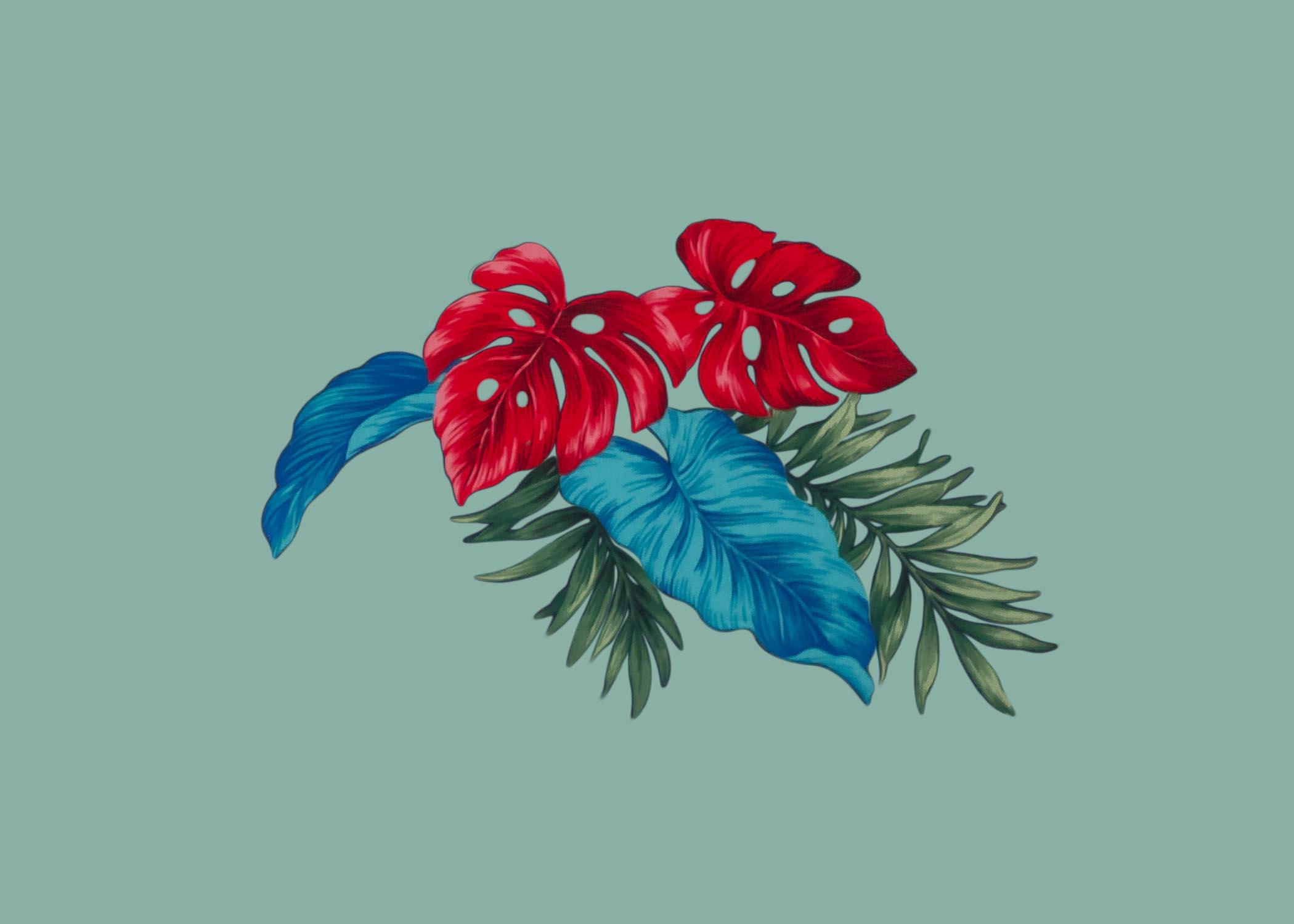 siboney flower 3.jpg
