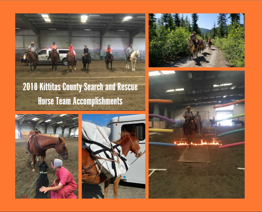 Horse Team collage 2018 accomplishments.png
