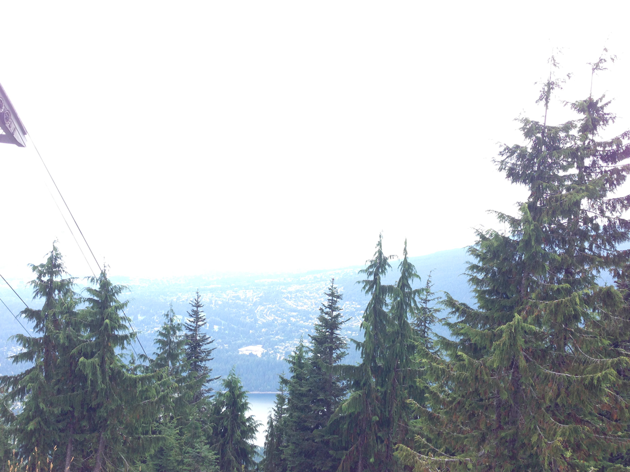 Then finally the trees begin to thin and after 1.5 hours of climbing (and accidentally taking the wrong trail for 20 min) you make it to the top!