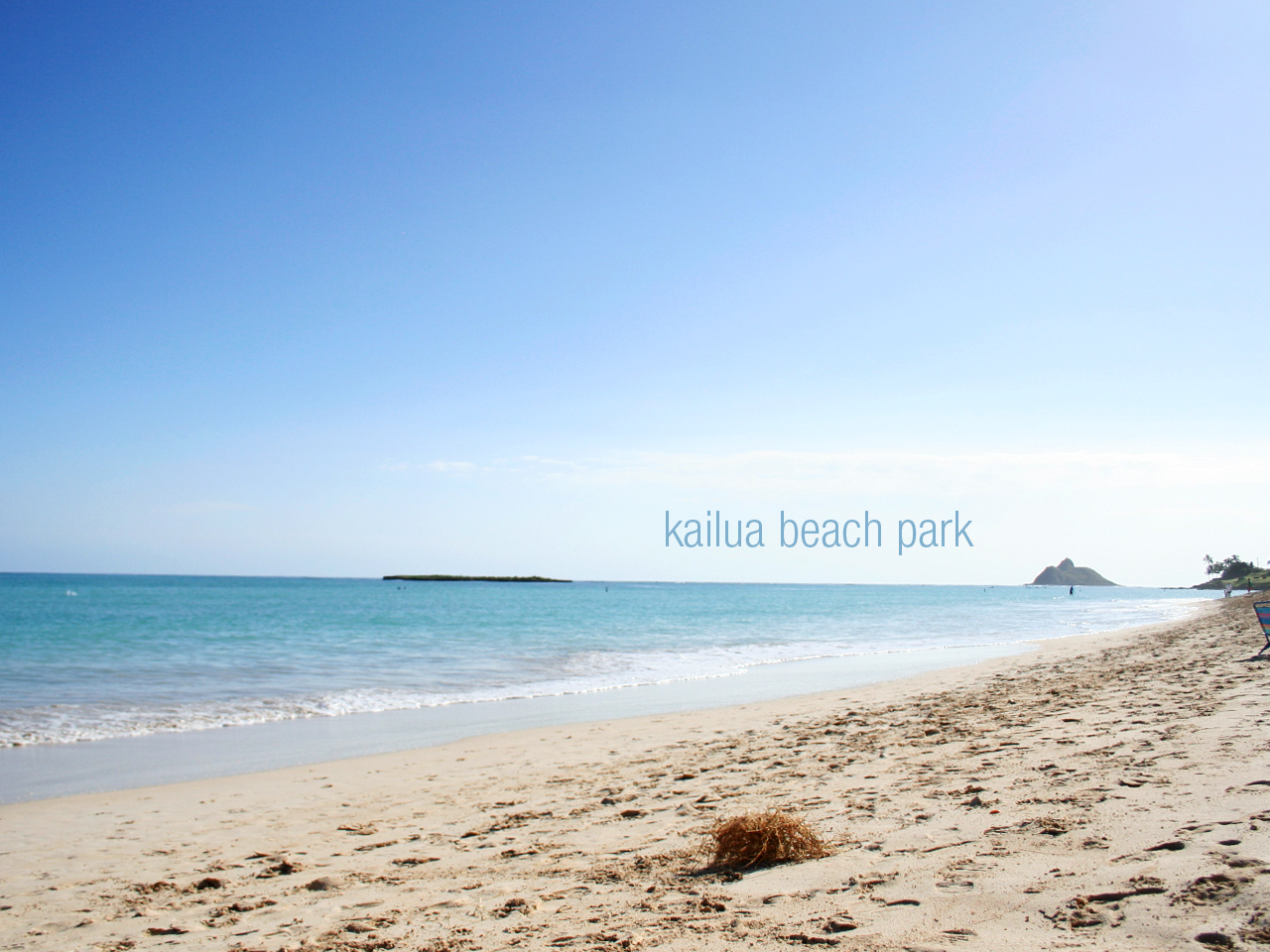 Next stop- Kailua beach park! We got here before 9am and almost had the beach to ourselves. Us and a cute old Italian man who vacations there for 3 months each year.