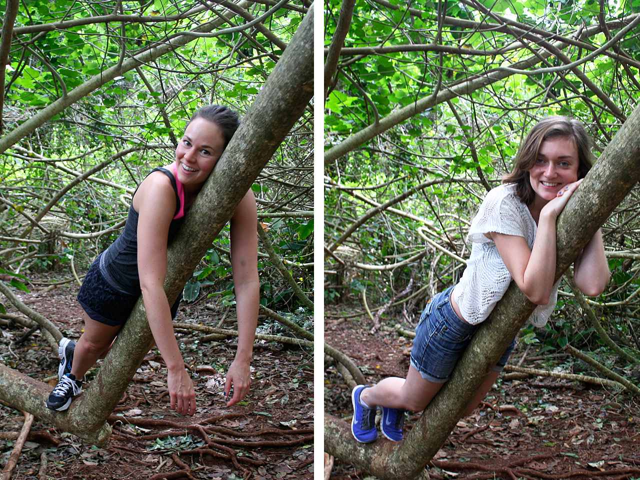 """The hike was really nice and the forest was so luscious! There was a cool tangle of huge low hanging branches so we had to """"sloth"""" on them, obviously."""