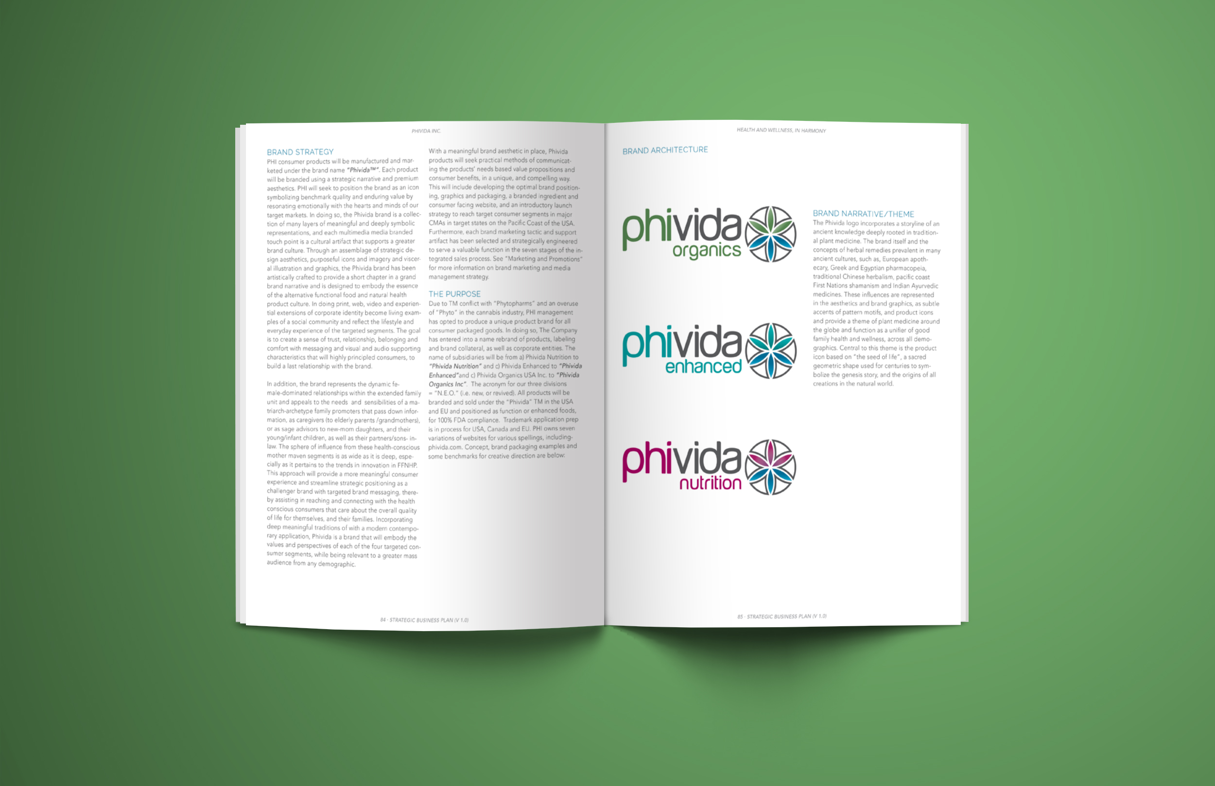 katelynbishop_design_phivida_businessplan2