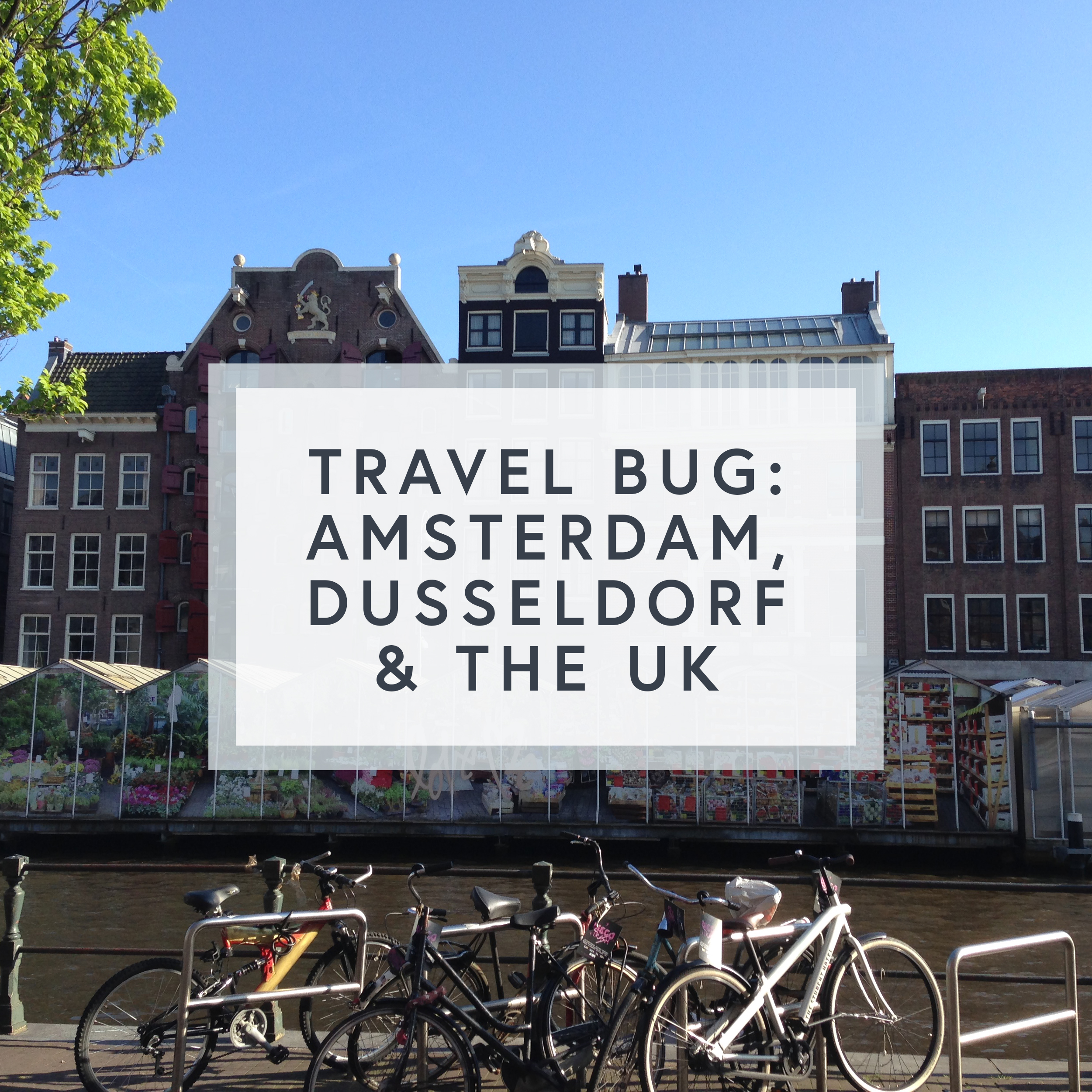 My first weekend away was exploring Amsterdam, so many canals, bikes, flower markets and amazing architecture.