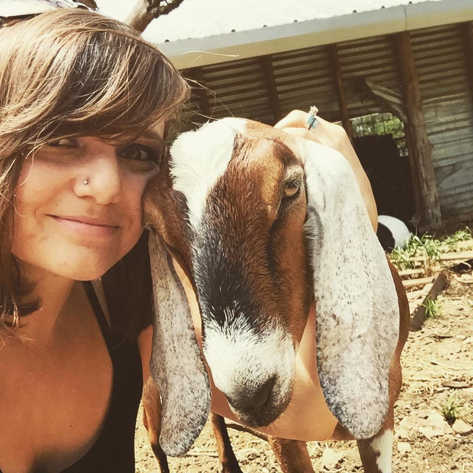 I just really love goats.