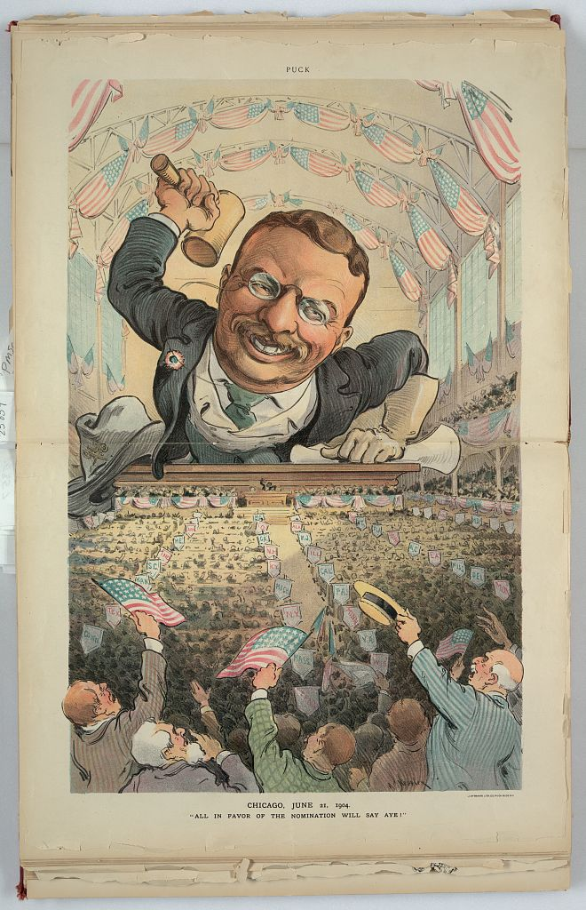 All in favor of the nomination will say aye! - Jun 15, 1904