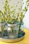spring jar flowers.jpg