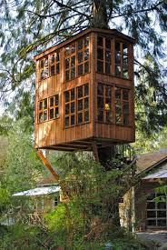 Big Grown-Up Tree House