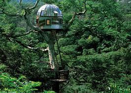 Birdcage Tree House