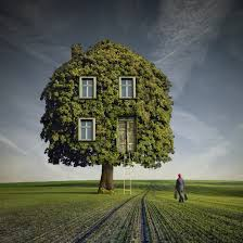 The Leafy Green Tree House