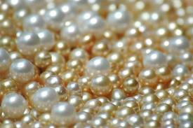 Polished Pearls in Yellow Tones