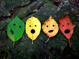 Leaf FALL Faces, oh my!