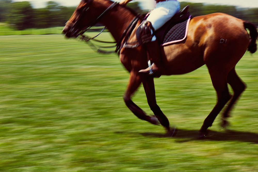 Horse-riding-action-photography.jpg