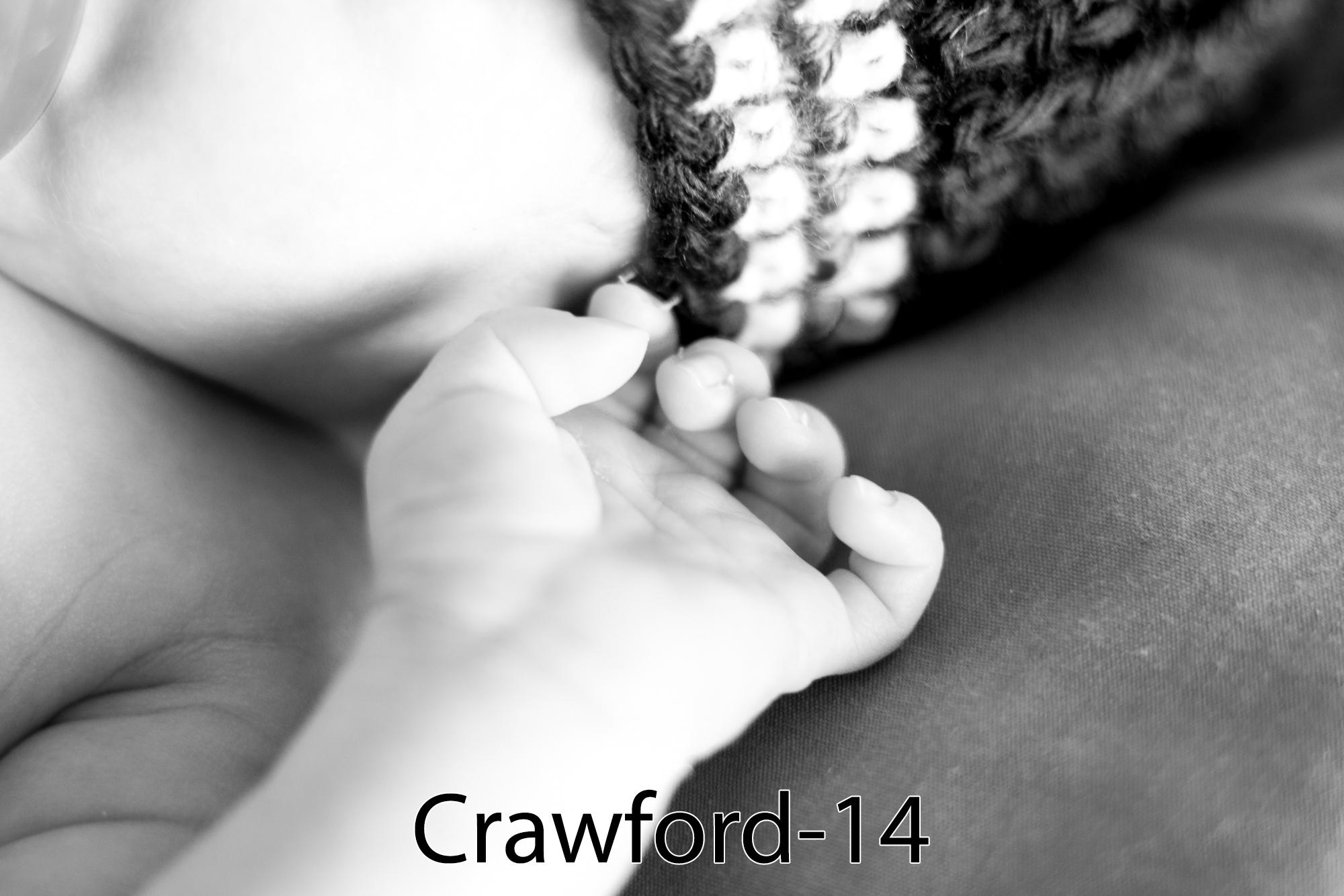 Crawford-14.jpg