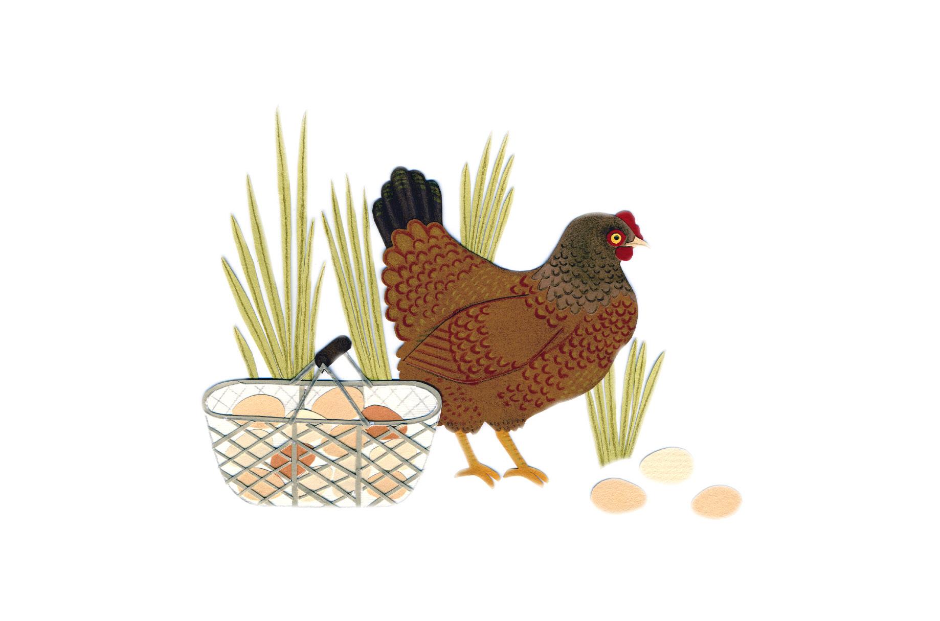 chicken_spot.jpg
