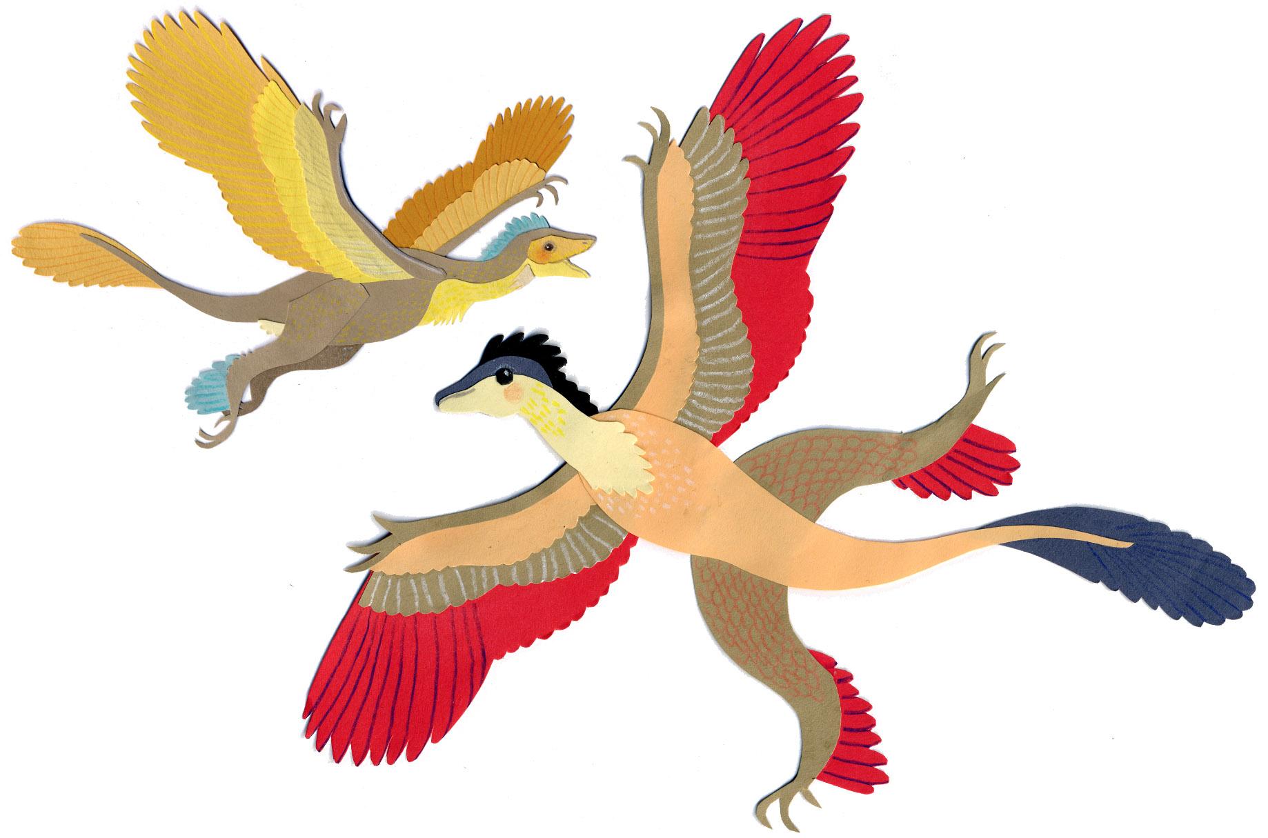 tuba_birds.jpg