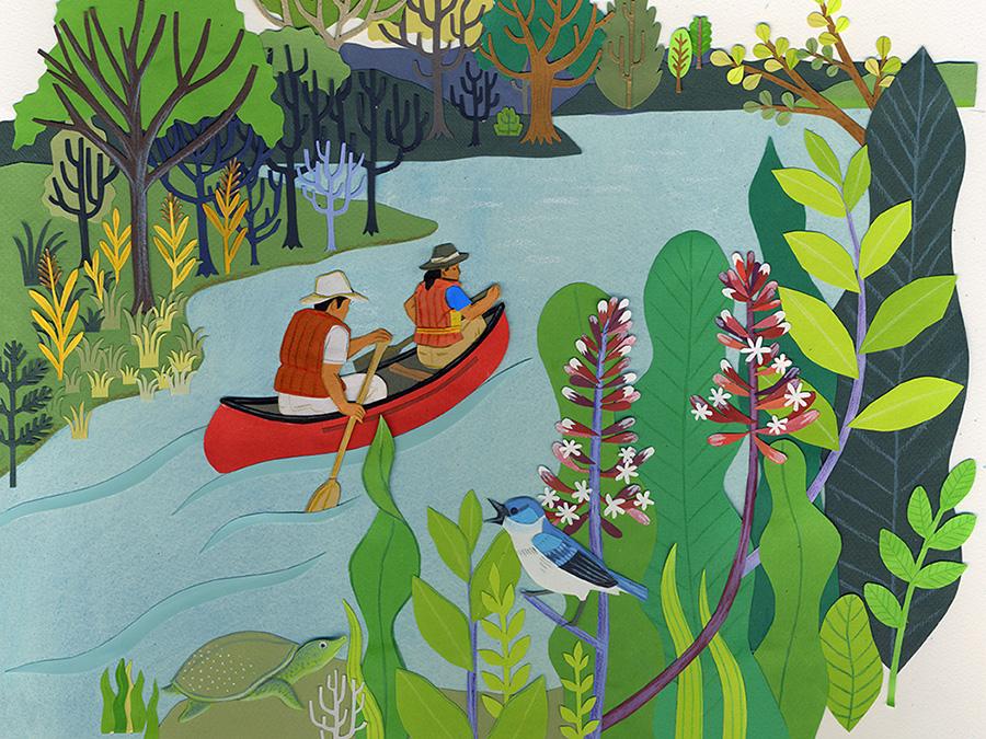 Ontario_canoe_illustration.jpg