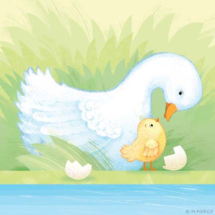 BBY10-Duck chick
