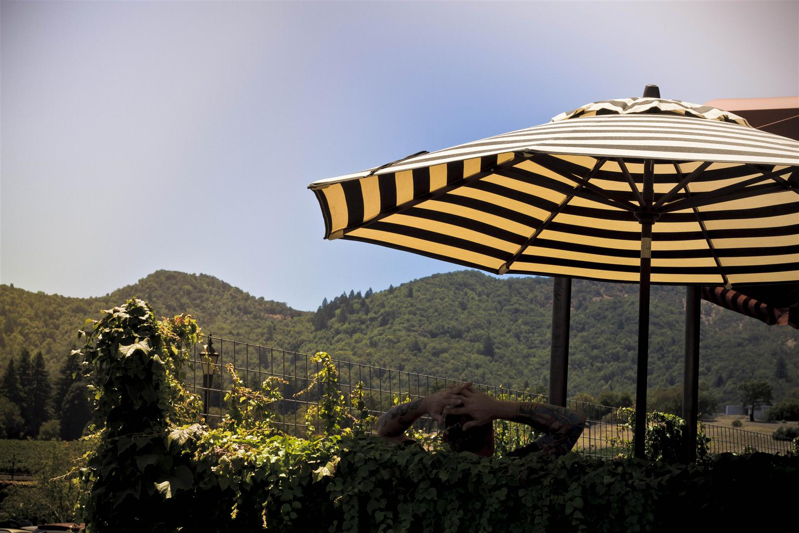 Yountville (7)
