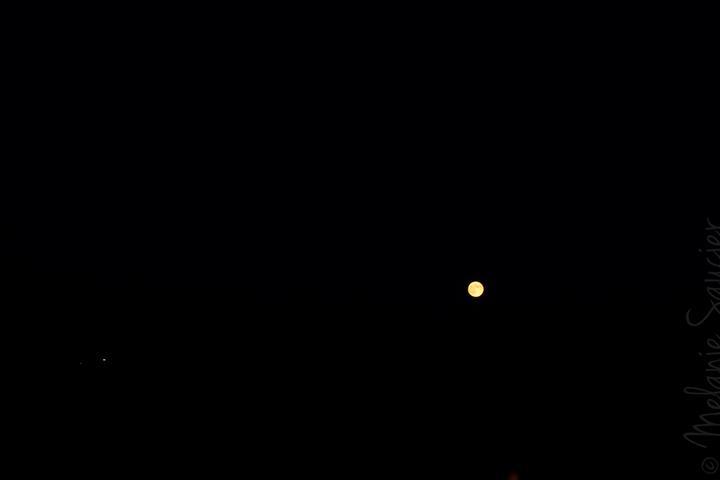 #2 ISO 800mm, 50mm, f/9.0, 1/40 sec—on this shot, the moon was all detailed and the environment was all black.    #2 ISO 800mm, 50mm, f/9.0, 1/40 sec—sur cette photo, j'ai pris les détails de la lune alors que l'environnement était complètement noir.