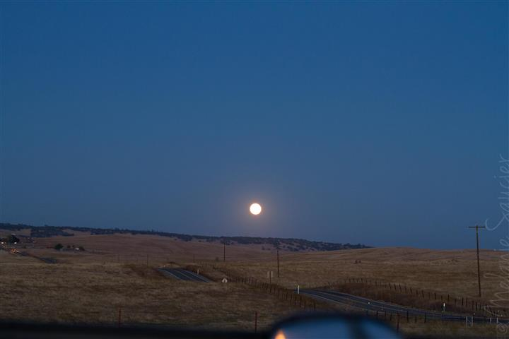 #1 ISO 800mm, 50mm, f/6.3, 1/5 sec—these settings gave me a somewhat clear shot of the environment but the moon was overexposed naturally.    #1 ISO 800mm, 50mm, f/6.3, 1/5 sec—ces ajustements m'ont permis d'avoir l'environnement relativement clair alors que la lune était sur-exposée.