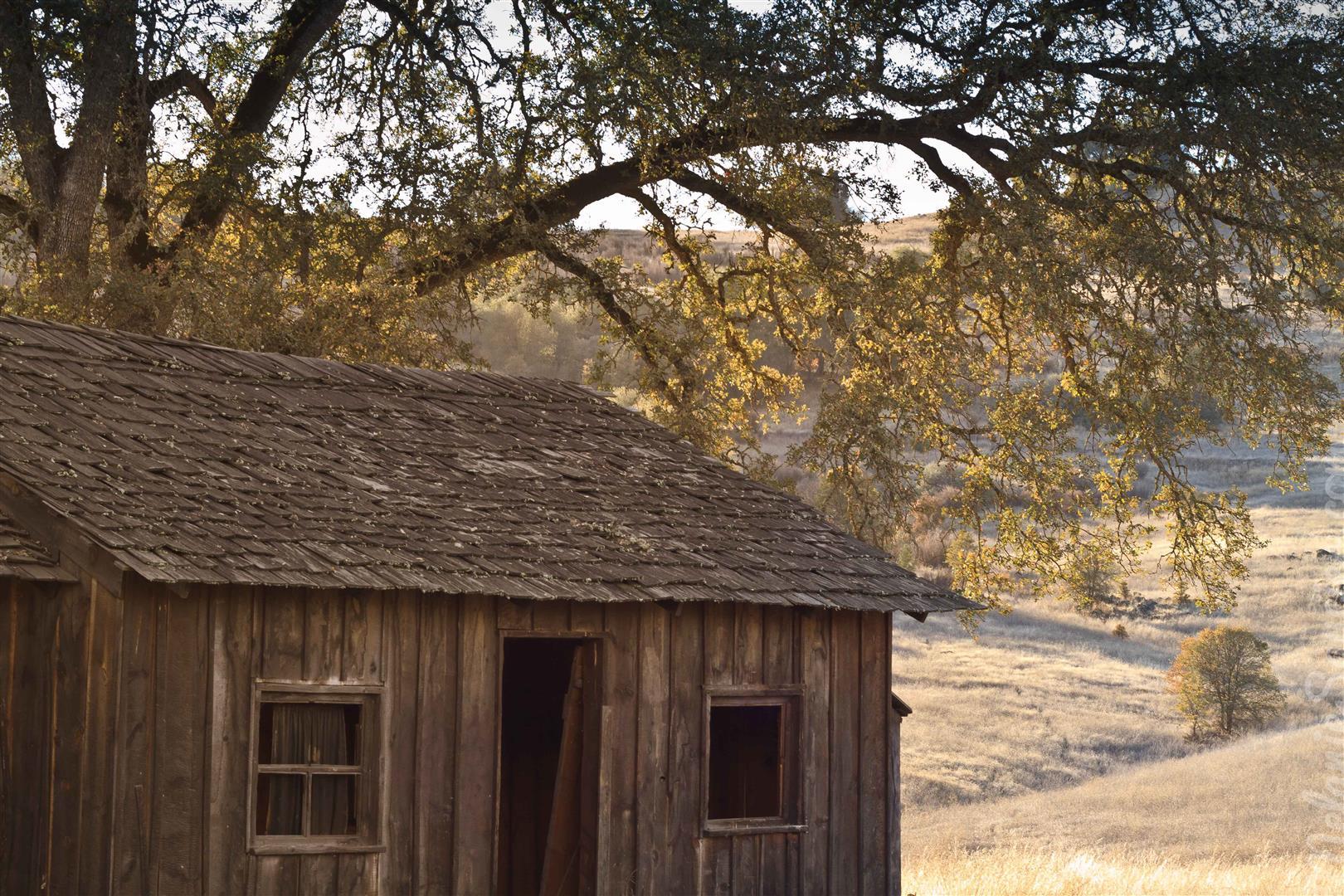 california cronan ranch (3)