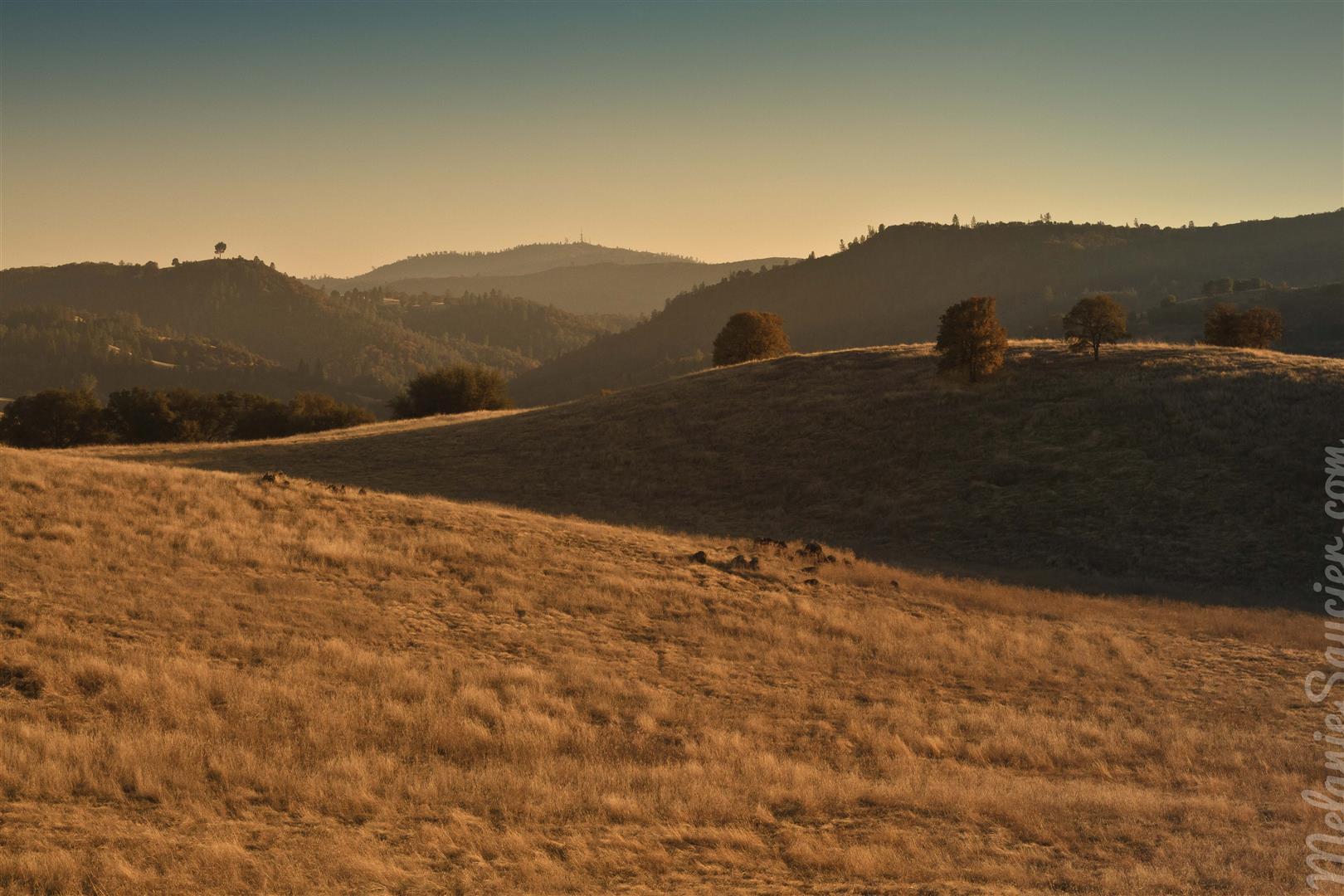 Cronan Ranch-28 (Large)