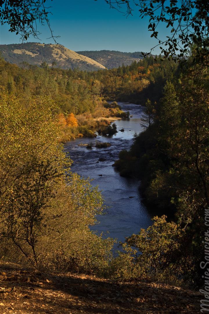 Hiking Trails Magnolia Ranch American River California