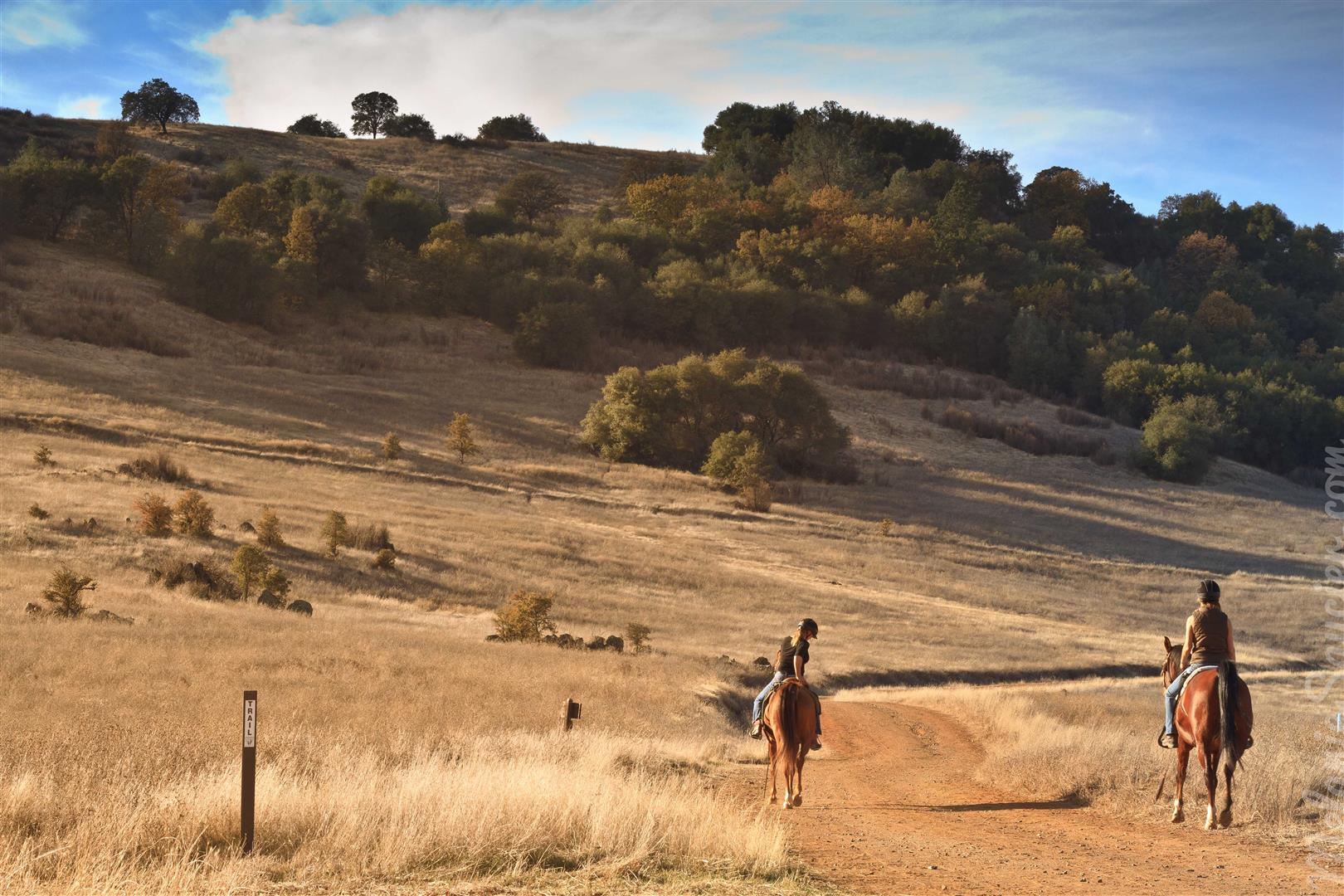 Cronan Ranch-9 (Large).jpg