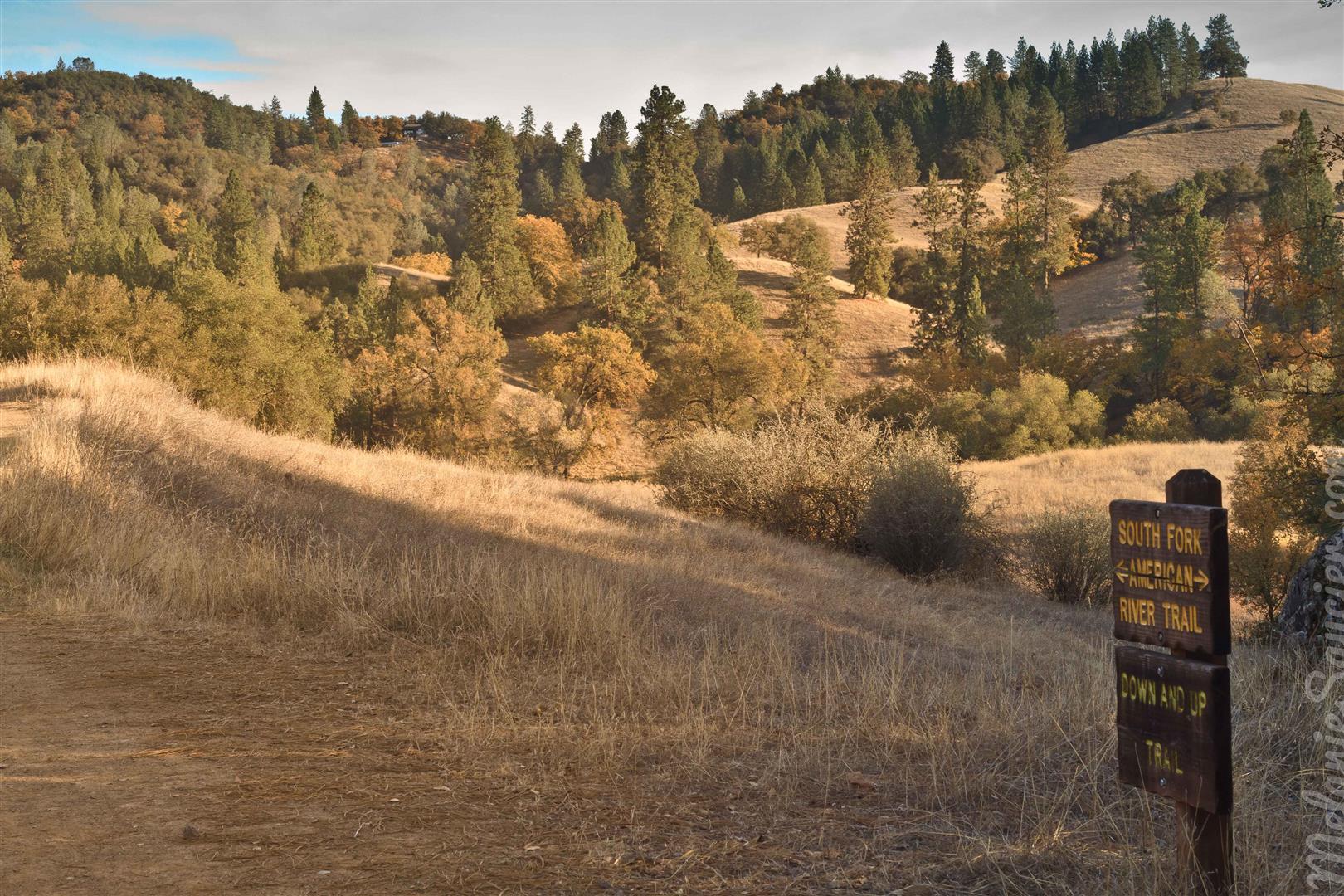 Cronan Ranch-19 (Large).jpg