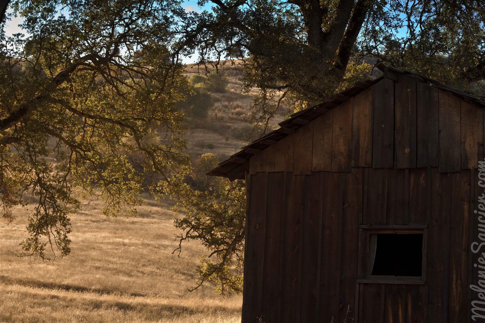 Cronan Ranch-15 (Large).jpg